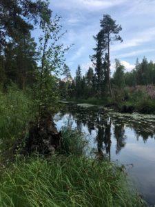 Låsjökanalen 18-07-18