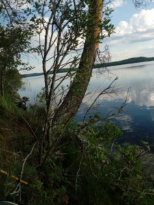 Trångsjön 18-07-11